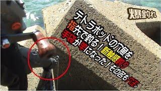 getlinkyoutube.com-穴釣り!手袋竿の穴王テトラポットの穴で釣りまくる。