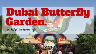 getlinkyoutube.com-Butterfly Garden Dubai - A walkthrough!