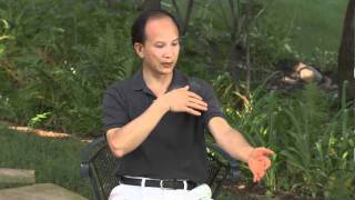 "getlinkyoutube.com-Spring Forest Qigong Demo ""How Your Energy System Works"""