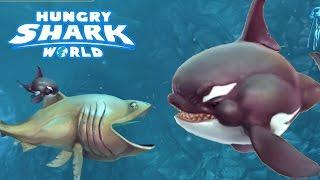"""getlinkyoutube.com-SECRET KILLER WHALE PET UNLOCKED """"WILL"""" ! - Hungry Shark World Part 13 (HSW) - HIDDEN PET!"""