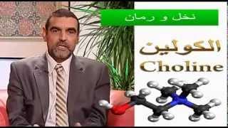 getlinkyoutube.com-نخل ورمان : مادة الكولين choline مع د محمد الفايد
