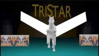 TriStar Pictures Logo (1993, with Sony Pictures Entertainment byline)