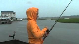 サメって川までくるんだね。。。釣った魚を横取り