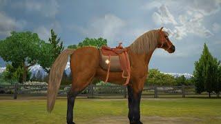getlinkyoutube.com-Pony Friends 2 (part 2) (Horse Game)