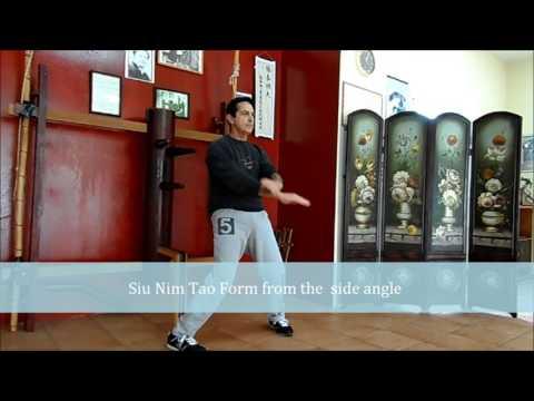 Wing Chun /Ving Tsun Siu Nim Tao From/interview-L.Kastrounis Part1