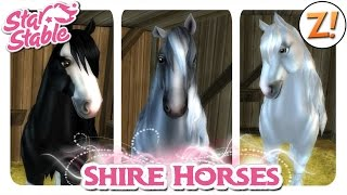 getlinkyoutube.com-Star Stable [SSO]: Shire Horse - Neue Farben [Update 21.10.2015] | Let's Play ♥ [GER/DEU]