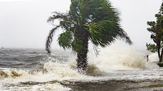 L'ouragan Michael ravage la Floride et fait au moins deux morts width=