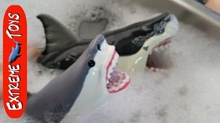 getlinkyoutube.com-Shark Toys take a bath.  What sharks are in the bubbles?