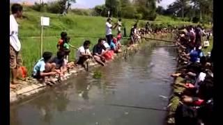 getlinkyoutube.com-Lomba mancing Lele Master di Bali