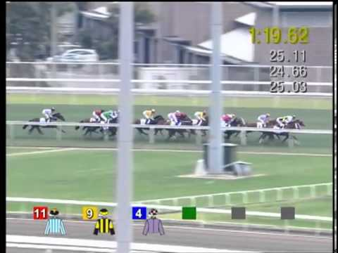 2013 BMW Hong Kong Derby (HK Group 1)