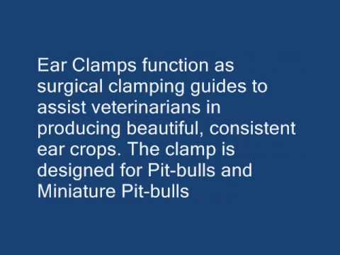 Pitbull Ear Cropping Tools Kit.wmv