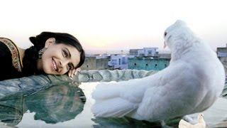 Rehna Tu [Full Song] - Delhi 6 view on youtube.com tube online.