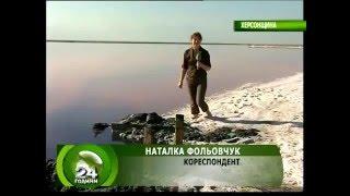 getlinkyoutube.com-Целебное озеро Сиваш