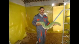 getlinkyoutube.com-استنبات الشعير- الجزائر-خنشلة جزء 1