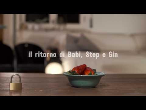 Federico Moccia, Tre volte te - Il ritorno di Babi, Step e Gin
