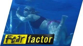 getlinkyoutube.com-The ice swim part 1 | Fear Factor Extra