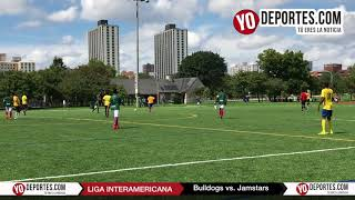 Bulldogs eliminan a los Jamstars Liga Interamericana