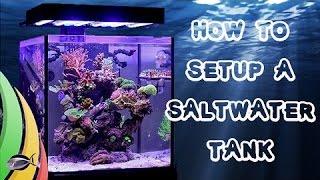 How To Set Up A Saltwater Fish Tank / Aquarium
