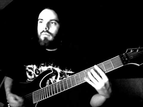 vildhjarta - shadow (bergström guitar play)