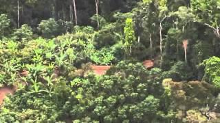 getlinkyoutube.com-คนป่า ที่เป็นข่าว