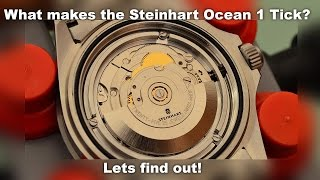 getlinkyoutube.com-Inside the Steinhart Ocean 1