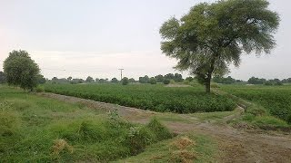 My Beautiful Village Ghugh Chakwal - Must Watch