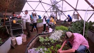 Greenhouse Design: Bucky's Legacy
