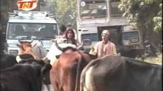 getlinkyoutube.com-Hum Hain Banaras Ke Bhaiya- Bhojpuri Comedy Song