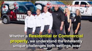 Wattspest.com Offers Cost-Effective Bed Bug Treatment And Prevention In Phoenix