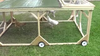 getlinkyoutube.com-How to build a chicken tractor