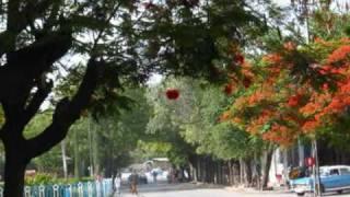 getlinkyoutube.com-HIN BOYINI BY ABEBE ABISHU