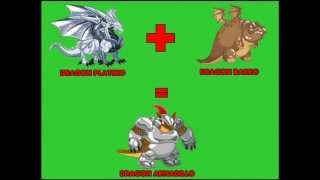 getlinkyoutube.com-Como Hacer Los Mejores Dragones En Dragon City 2013