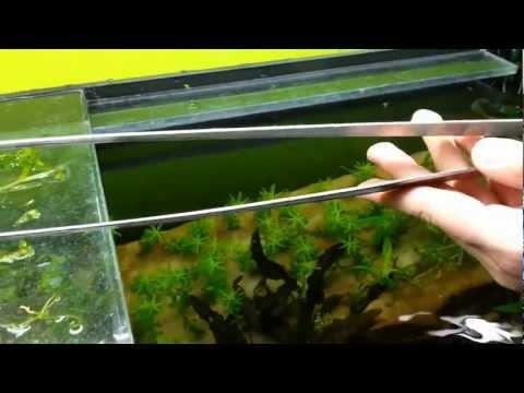 FRISCER nerezová pinzeta rovná 50 cm | Rostlinna-akvaria.cz
