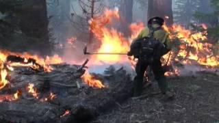 getlinkyoutube.com-Wildland Fire Recruiting Video