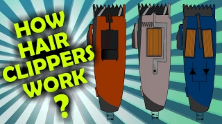 How Rotary, Magnetic and Pivot Hair Clipper Motors work?
