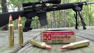Phim 223 hornady vmax 55 gr varmint express at 200 and 300 yards