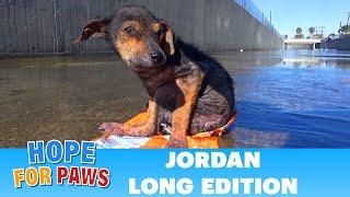 getlinkyoutube.com-Jordan's Journey - The extended version.