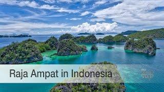 getlinkyoutube.com-Raja Ampat in Wonderful Indonesia is simply stunning!