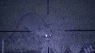 getlinkyoutube.com-Springtime Coon Hunt- Poor Man's Night Vision System