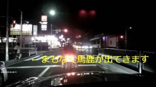 getlinkyoutube.com-【ドラレコ】無灯・ 信号無視のDQN原チャリに対し鬼クラクション炸裂
