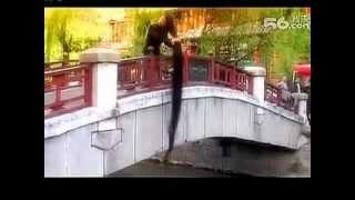 getlinkyoutube.com-Xia Aifeng travelled in Lijiang, Yunnan province