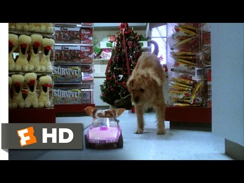 Gremlins (6/6) Movie CLIP - Gizmo to the Rescue (1984) HD