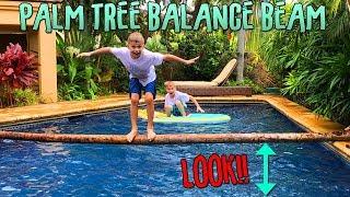 Palm-Tree-Balance-Beam-Who-Falls-Off-First width=