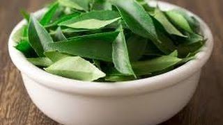 getlinkyoutube.com-How to stop hair loss very fast with curry leaves and Re hair growth Hair Loss