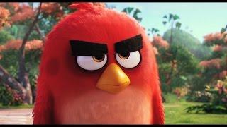 getlinkyoutube.com-앵그리 버드 더 무비  THE ANGRY BIRDS MOVIE  1차 공식 예고편 (한국어 CC)