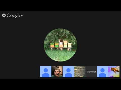 DE LA STUPARI PENTRU STUPARI - LIVE Talk Show Cea mai buna cutie pentru stupari si/sau pentru albine