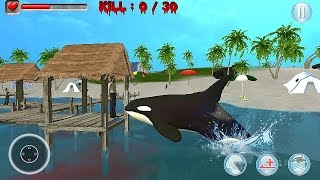 getlinkyoutube.com-Killer Whale Simulator 3D - Gameplay Android