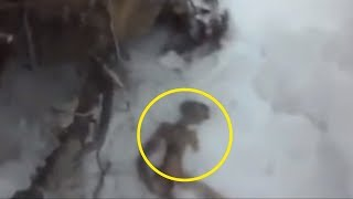 getlinkyoutube.com-5 Aliens Caught On Camera & Spotted In Real Life!