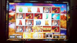 getlinkyoutube.com-Herd slot machine bonus round ~ Incredible Technologies