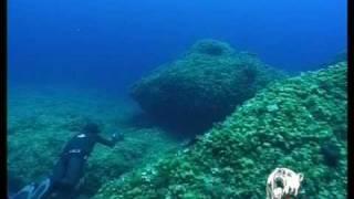 Los Misterios de la Pesca submarina. Trailer ReivaxFilms
